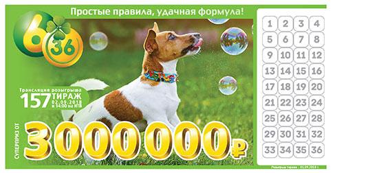 Лотерея 6 из 36 тираж 157 с собакой