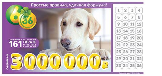 Лотерея 6 из 36 тираж 161 с собакой