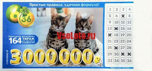 Лотерея 6 из 36 тираж 164 с котятами