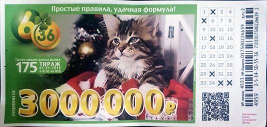 175 рождественский тираж лотереи 6 из 36 с котенком