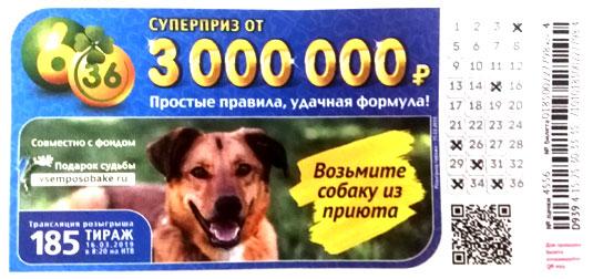 185 тираж лотереи 6 из 36 с собакой