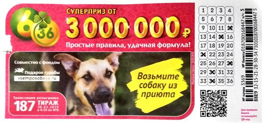 187 тираж лотереи 6 из 36 с собакой из приюта
