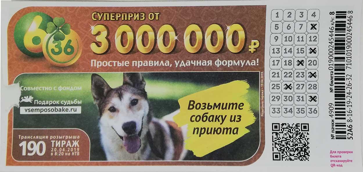 190 тираж лотереи 6 из 36 с собакой из приюта