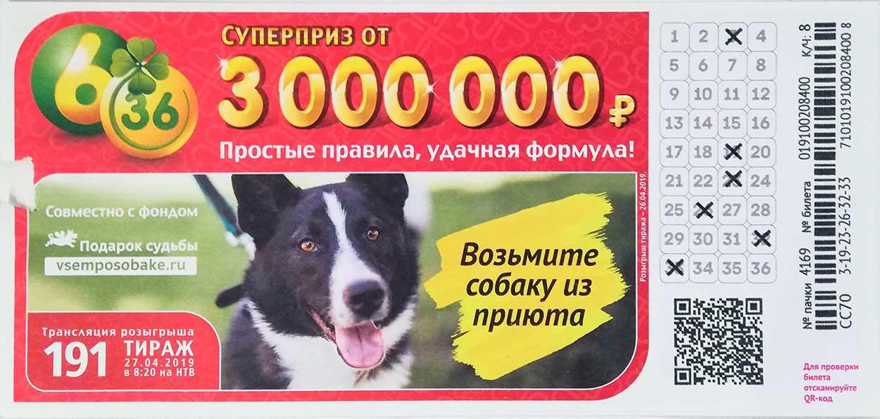 191 тираж лотереи 6 из 36 с собакой из приюта