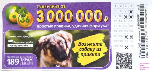 189 тираж лотереи 6 из 36 с собакой из приюта